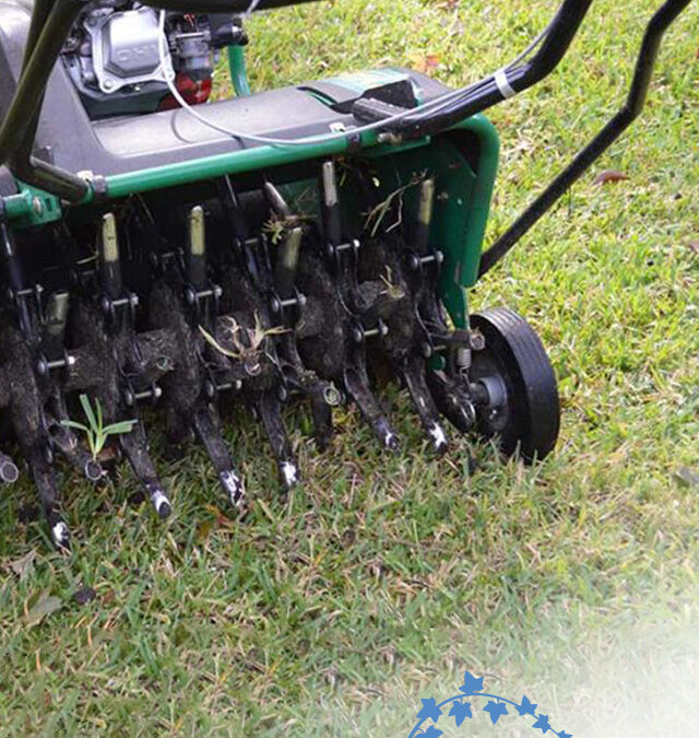 4 Benefits Of Lawn Aeration